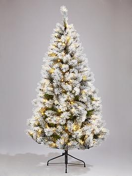 6ft-lowland-white-fir-christmas-tree