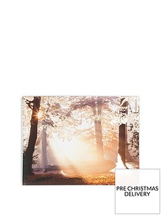 graham-brown-metallic-forest-canvas