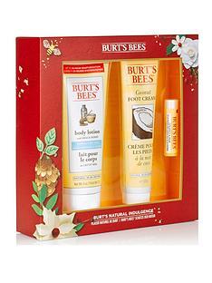 burts-bees-burt039s-bees-natural-indulgence-gift-set