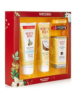 burts-bees-burts-bees-best-of-burts-gift-set