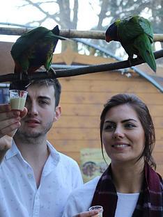 virgin-experience-days-animal-keeper-at-hemsley-conservation-centre-in-sevenoaks-kentnbsp