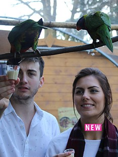 virgin-experience-days-animal-keeper-at-hemsley-conservation-centre