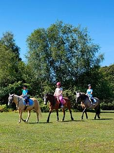 virgin-experience-days-introduction-to-riding-for-one-in-the-new-forest-hampshire