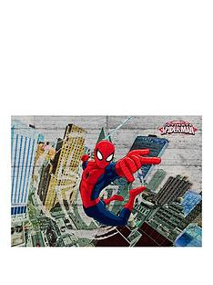 spiderman-concrete-wall-mural