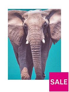 catherine-lansfield-elephant-cushion