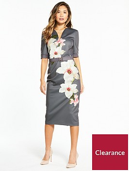 ted-baker-bisslee-chatsworth-bodycon-dress