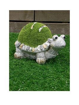 paroh-medium-flocked-turtle