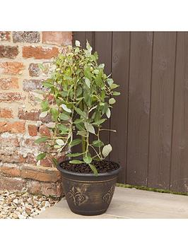 pair-fleur-de-lys-planters-gold-effect-12039039