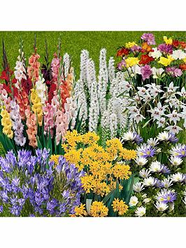 300-summer-flowering-bulbs-in-7-varieties