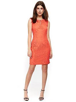 wallis-petite-geo-lace-shift-dress-coralnbsp