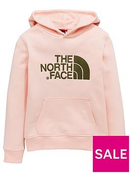 the-north-face-girls-drew-peak-hoodie