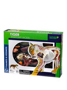 thames-kosmos-tiger-anatomy