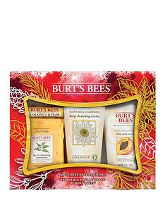 burts-bees-burts-bees-face-essentials-gift-set