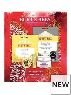 burts-bees-burts-bees-spa-collection-gift-set