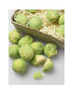 choc-on-choc-sprouts