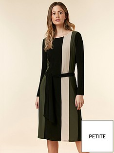 693ec72a6b0 Wallis Petite Colour Block Ring Jersey Dress - Multi