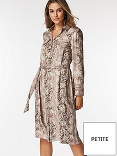 wallis-petite-snake-shirt-dress