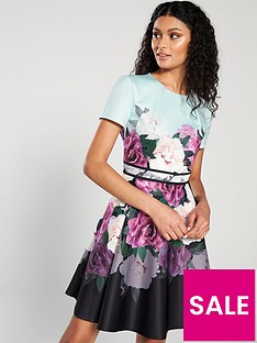 a24b94db0ebb51 Ted Baker Ted Baker Wilmana Magnificant Skater Dress