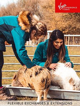 virgin-experience-days-piggy-pet-and-play-for-two-at-kew-little-pigs