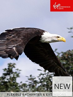 virgin-experience-days-visit-to-eagle-heights-the-uks-largest-bird-of-prey-centre-with-afternoon-tea-for-two