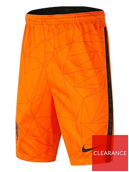 nike-nike-youth-holland-home-2020-short-sleeved-stadium-shirt