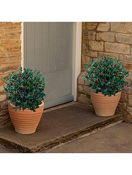 holly-ball-with-berries-ilex-blue-maid-40-50cm-26cm-pot