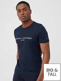 tommy-hilfiger-core-logo-t-shirt-navy