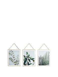 arthouse-set-3-botanical-framed-prints