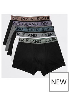 river-island-grey-metallic-wb-trunk