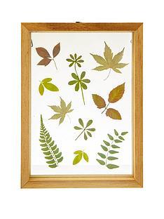sass-belle-herbarium-leaves-floating-frame