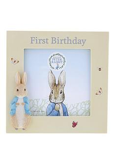 peter-rabbit-1st-birthday-photo-frame