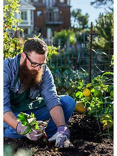 virgin-experience-days-garden-design-and-maintenance-online-course