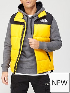 the-north-face-himalayan-insulated-vest-gold