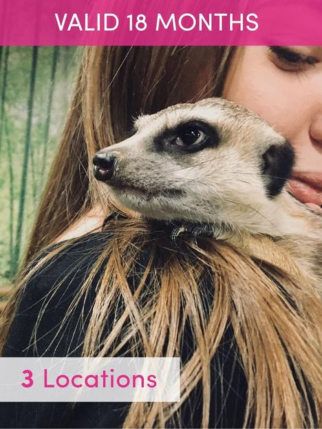 activity-superstore-meerkat-encounter-for-two