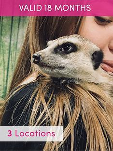 activity-superstore-meerkat-encounter-for-two