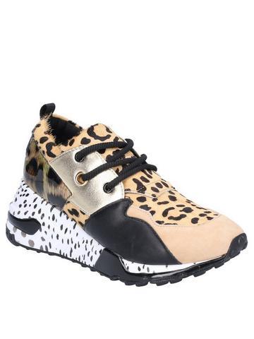 grande Contratación peligroso  Steve Madden Shoes   Steve Madden Store Online at Very.co.uk