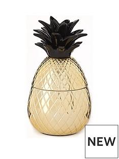 ceramic-pineapple-pot