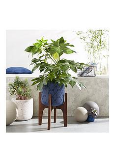 moroccan-pattern-planter-on-wooden-legs