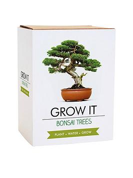 gift-republic-bonsai-tree-plant-grow-it