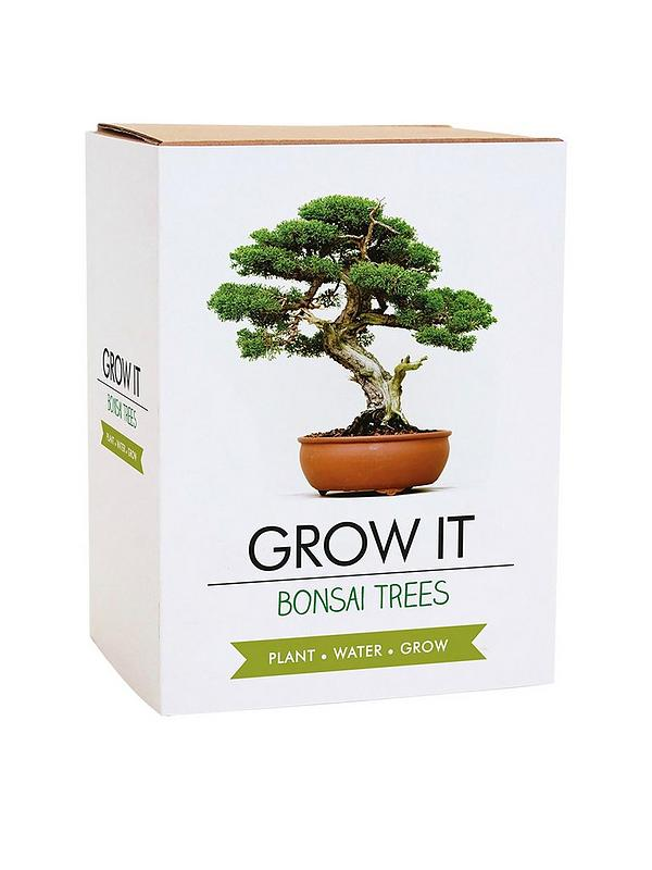 Gift Republic Bonsai Tree Plant Grow It Very Co Uk