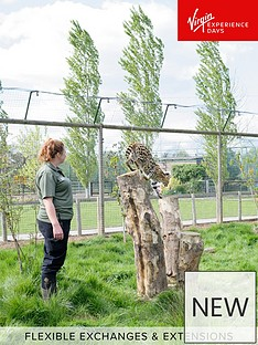 virgin-experience-days-big-cat-encounter-at-the-wildlife-heritage-foundation-in-kent