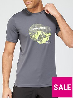 regatta-fingal-logo-t-shirt-grey