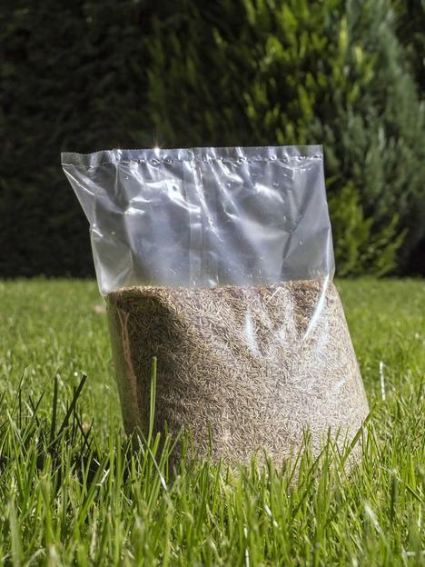 luxury-lawn-premium-grass-seed-mix-1kg