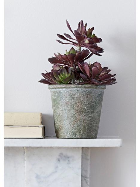cox-cox-faux-potted-burgundy-tipped-succulent