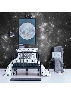 art-for-the-home-constellation-night-wall-mural