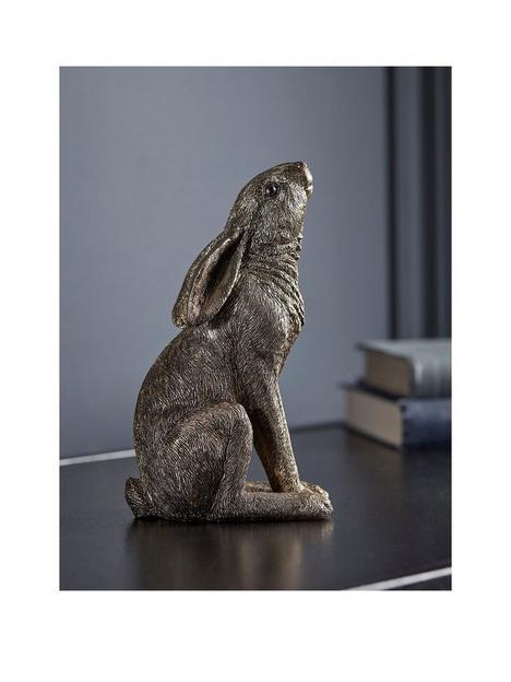 cox-cox-stargazing-hare