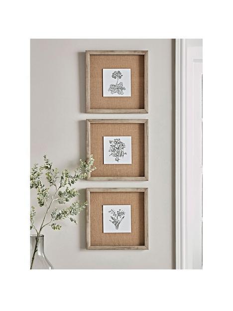 cox-cox-cox-cox-three-botanical-sketched-prints