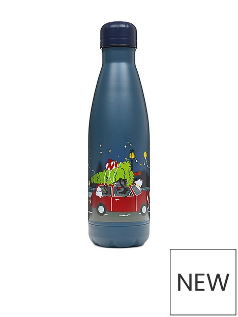 radley-driving-home-for-christmas-water-bottle-teal