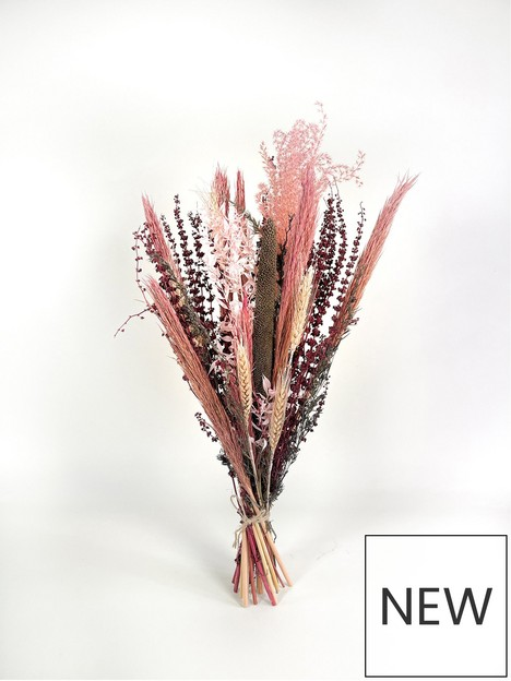 ixia-flowers-ixia-dried-flower-rosa