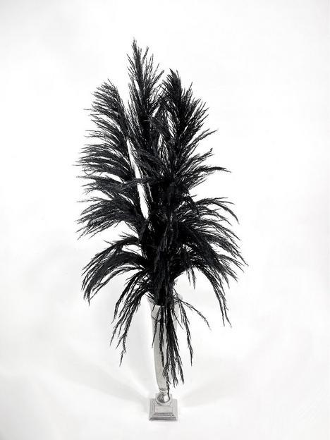 ixia-flowers-ixia-pampas-grass-fluffy-black-120cm-3-stems